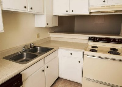 Omni-Apartment-kitchen-pet-friendly
